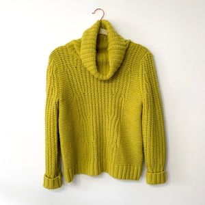 Banana Republic Italian Chunky Turtleneck Sweater